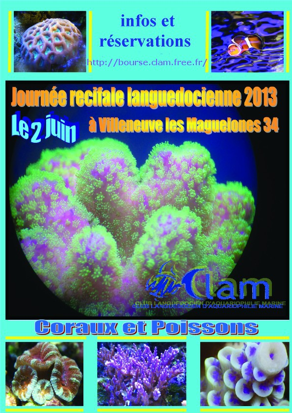 Informations bourse du CLAM 2013 Bourse10