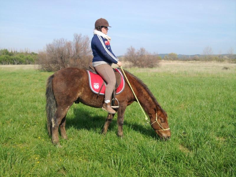 (Dpt 23) UTO, poney 4 ans, réservé par wakan11 !!!!!!!!!!!!!!!! (Déc 2011) - Page 4 Photo047