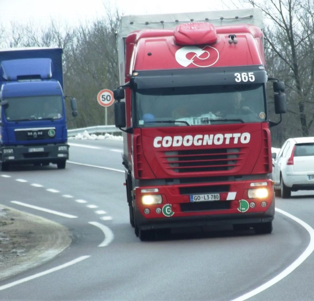 Codognotto (Salgareda)  - Page 2 Photo155