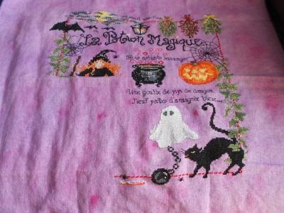 SAL Halloween 2013 prochaine étape 1er octobre - Page 25 Dscn0861