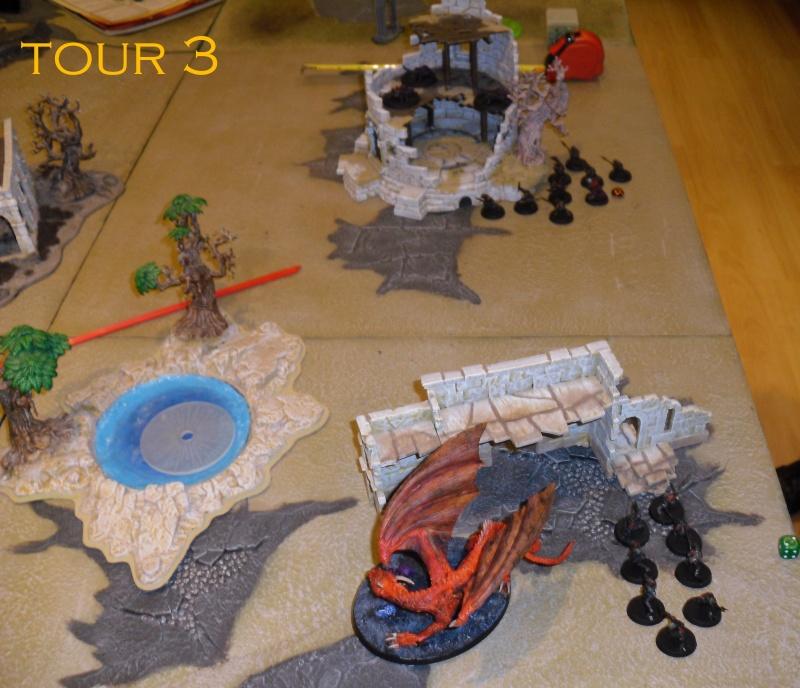 Gondor VS Gobelin&Dragon. Dsci8612