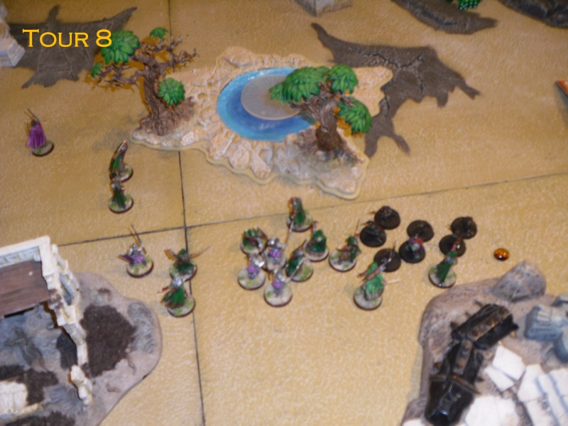 Gondor VS Gobelin&Dragon. Dsci8618