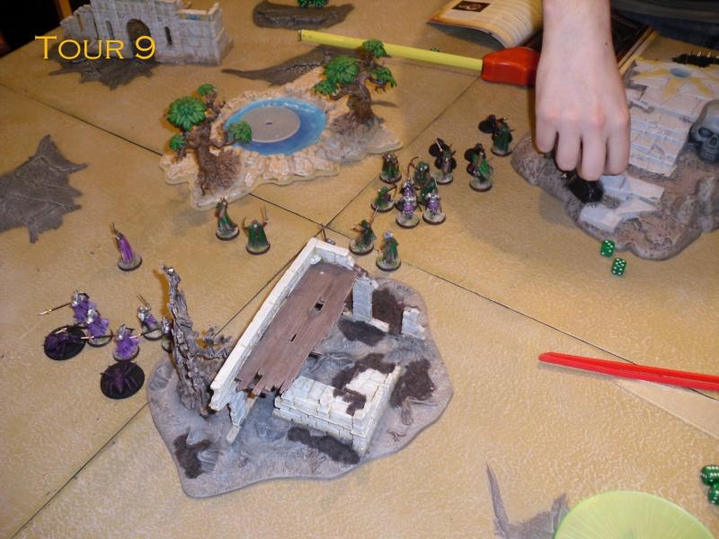 Gondor VS Gobelin&Dragon. Dsci8619