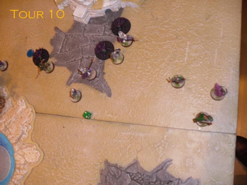Gondor VS Gobelin&Dragon. Dsci8620