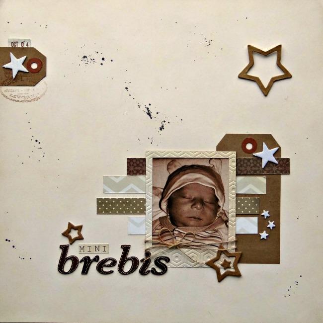 6 mars - défi NSP Brebis10