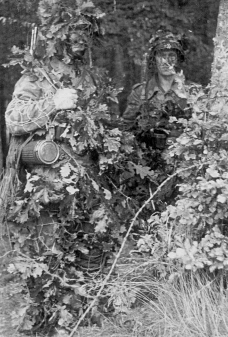 Les troupes de la Luftwaffe en Normandie 500aa10