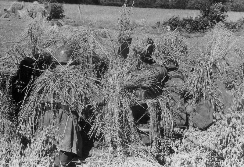 Les troupes de la Luftwaffe en Normandie Zz121010