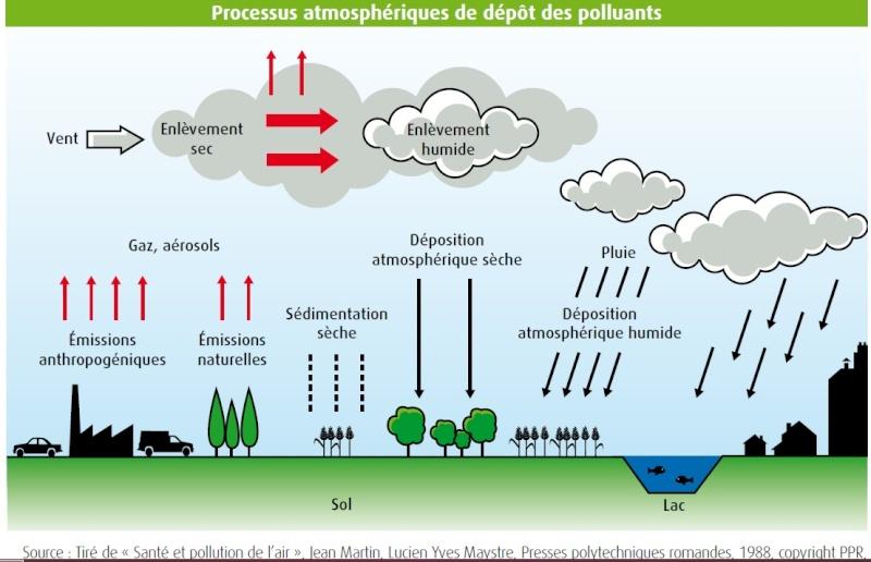 Aide pour biotope Amazonien  - Page 3 Nouvel10