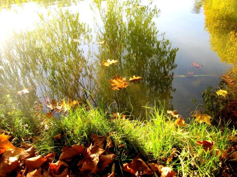 Voici l'automne - éditorial fin septembre / octobre Img_7410