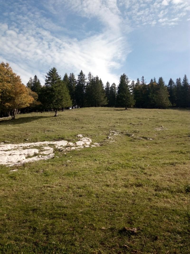 excursion en Suisse  Img_2039