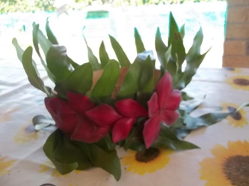 Un petit bout de Polynésie 100_5310