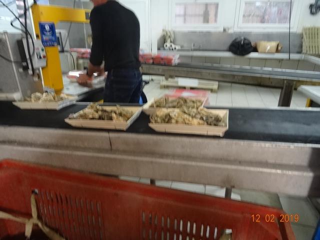 Les cabanes à huîtres Dsc00181