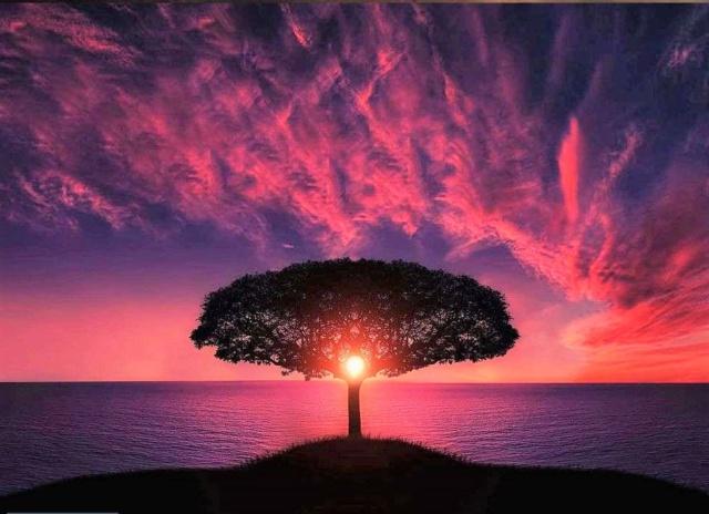 Concours le plus beau coucher de soleil E0468510