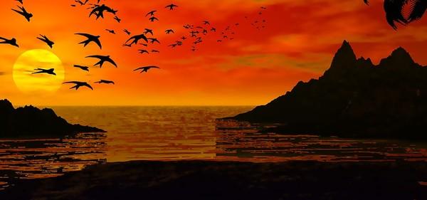 Votes concours les couchers de soleil Numero14