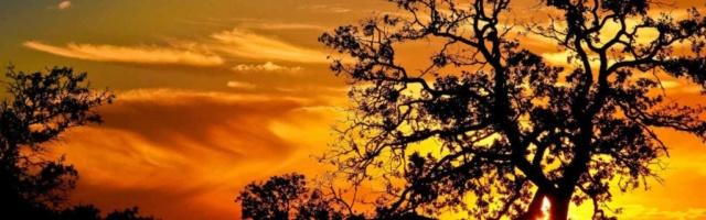Votes concours les couchers de soleil Numzor14