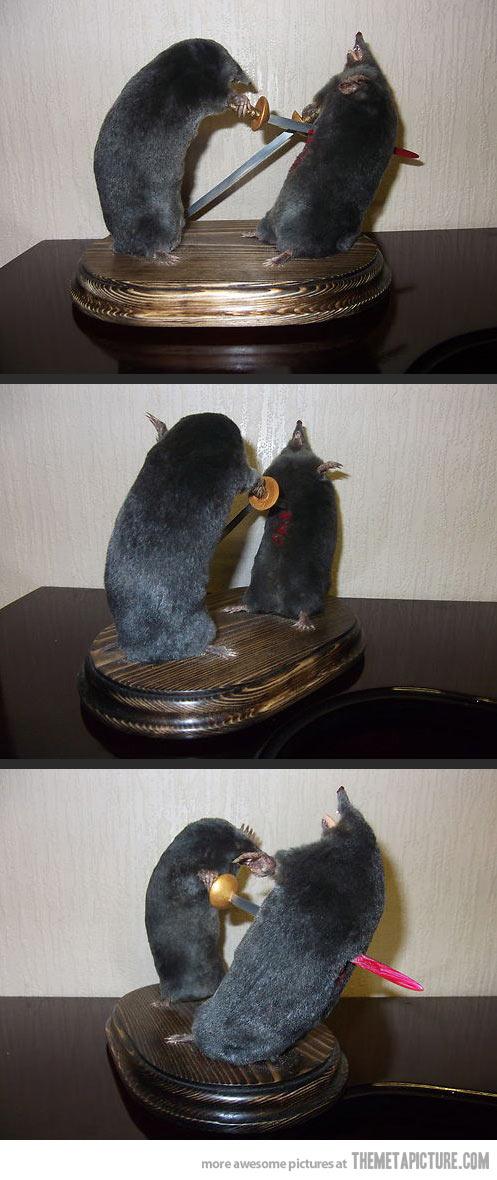 Diorama tabletaupe Funny-10