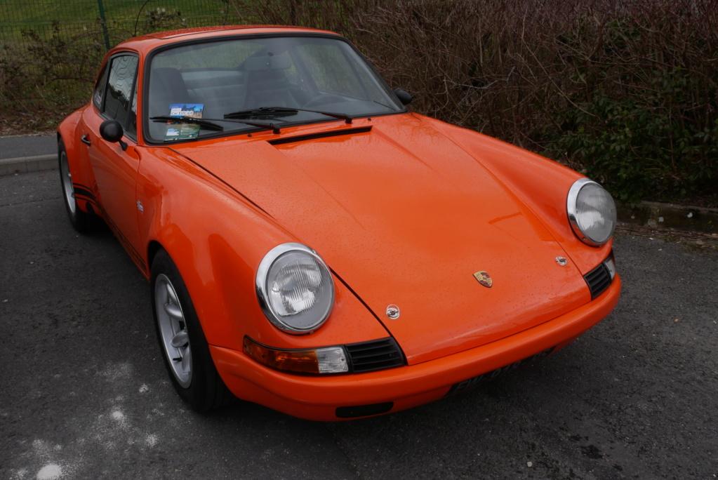 Une belle orange P1000412