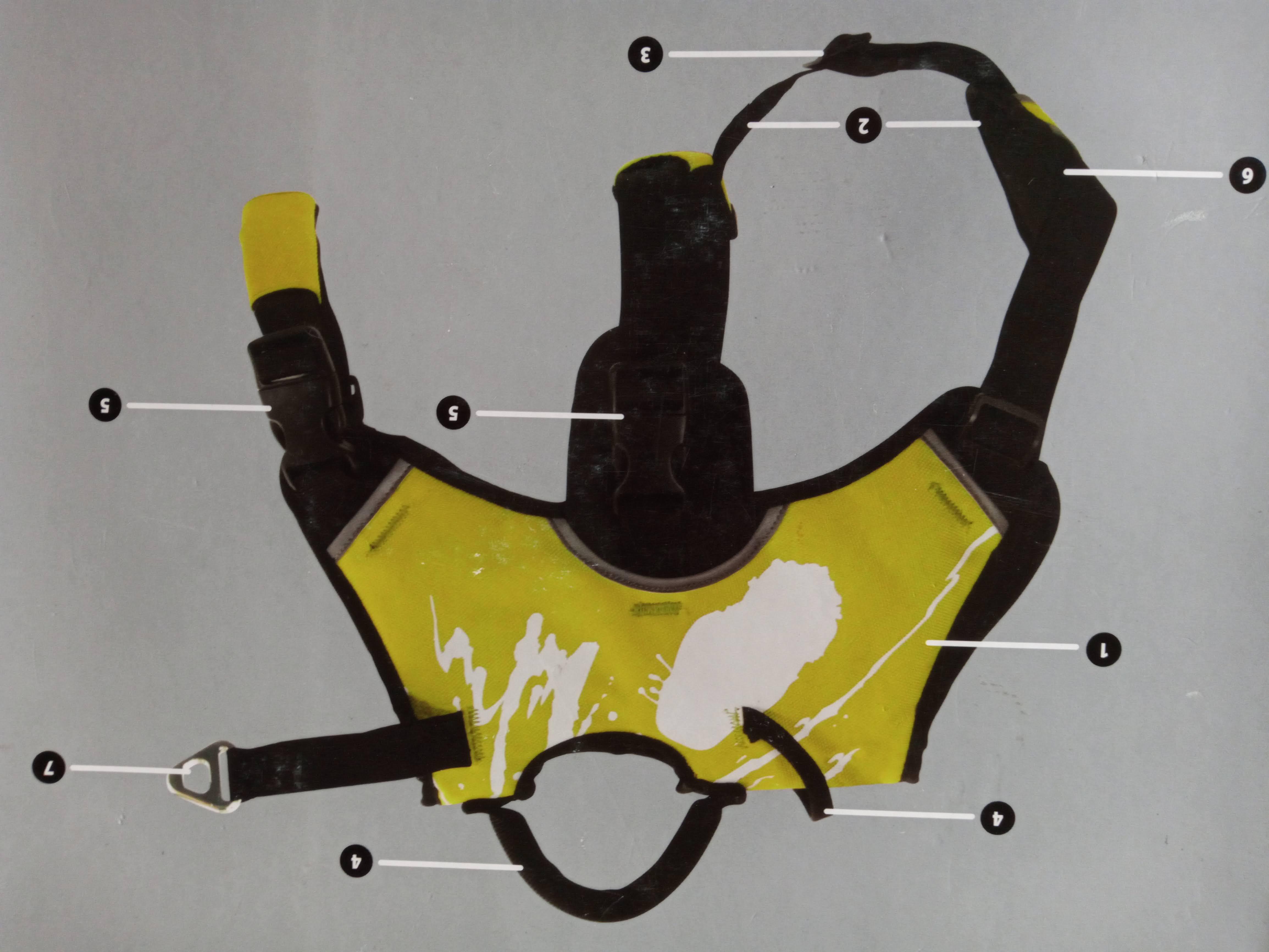 Harnais de traction / sport Img_2165