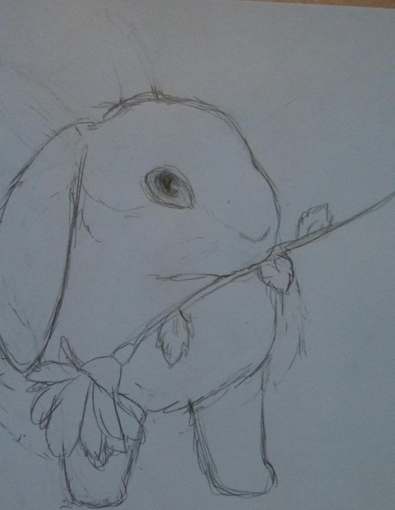 So I doodled my Fantagian!  Img_2010
