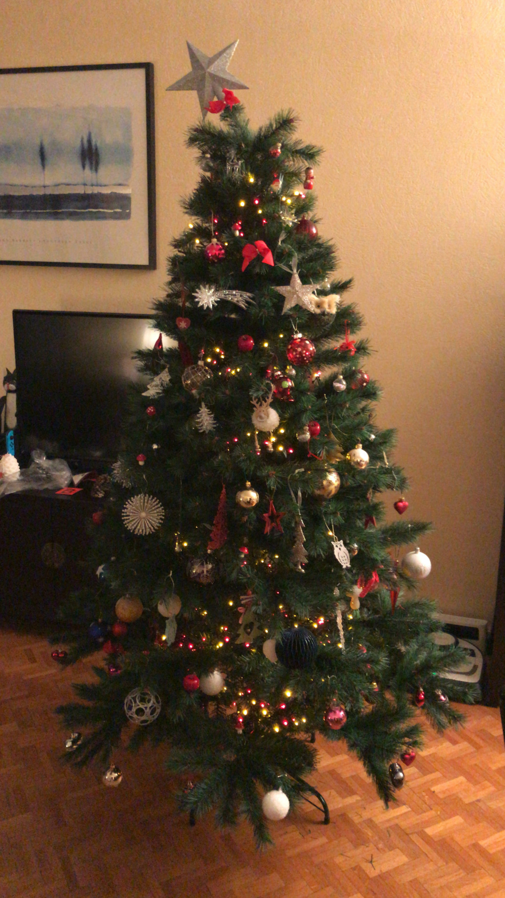 Mon beau sapin... - Page 28 Unname12