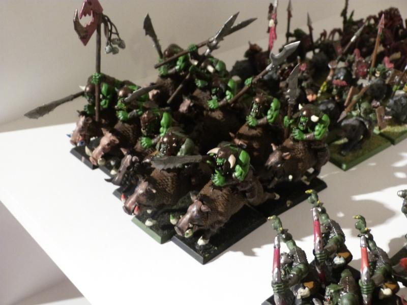 [Orques et Gobelins] Armée de Grimgors'bapt P1030210