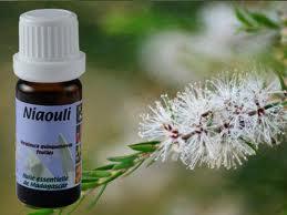Quelle huile essentielle pour les nez bouchés Niaoul10