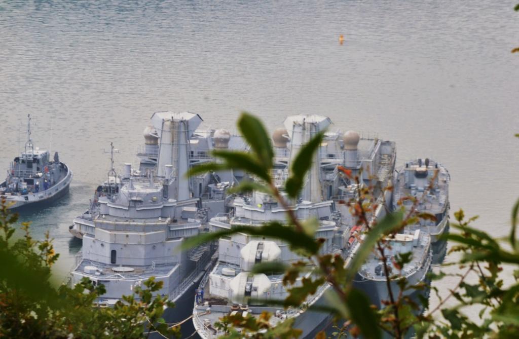 [Le cimetière des bateaux et du patrimoine de la Marine] Le cimetière de LANDEVENNEC - Page 17 Dsc_0515