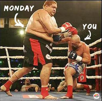 It's Baaaack!  Monday11