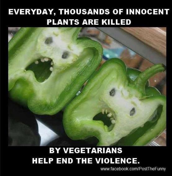 Things Green Veggie10