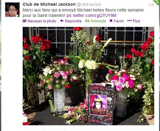 St Valentin de Michael ! Fleur_10