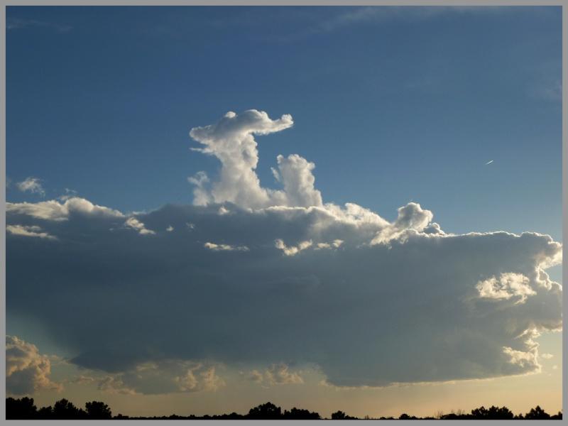 Saison orageuse 2013 :D P1050310