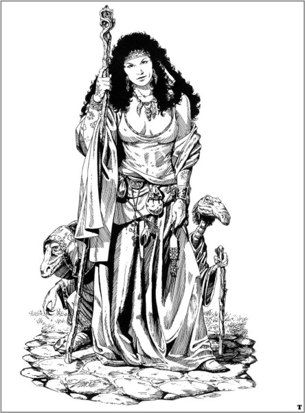 LARRY ELMORE (dessins) 13539610