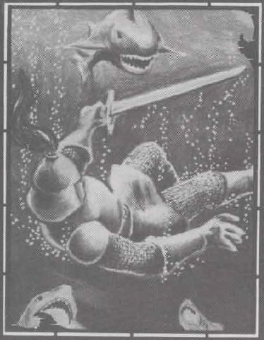 LE REQUIN Requin10
