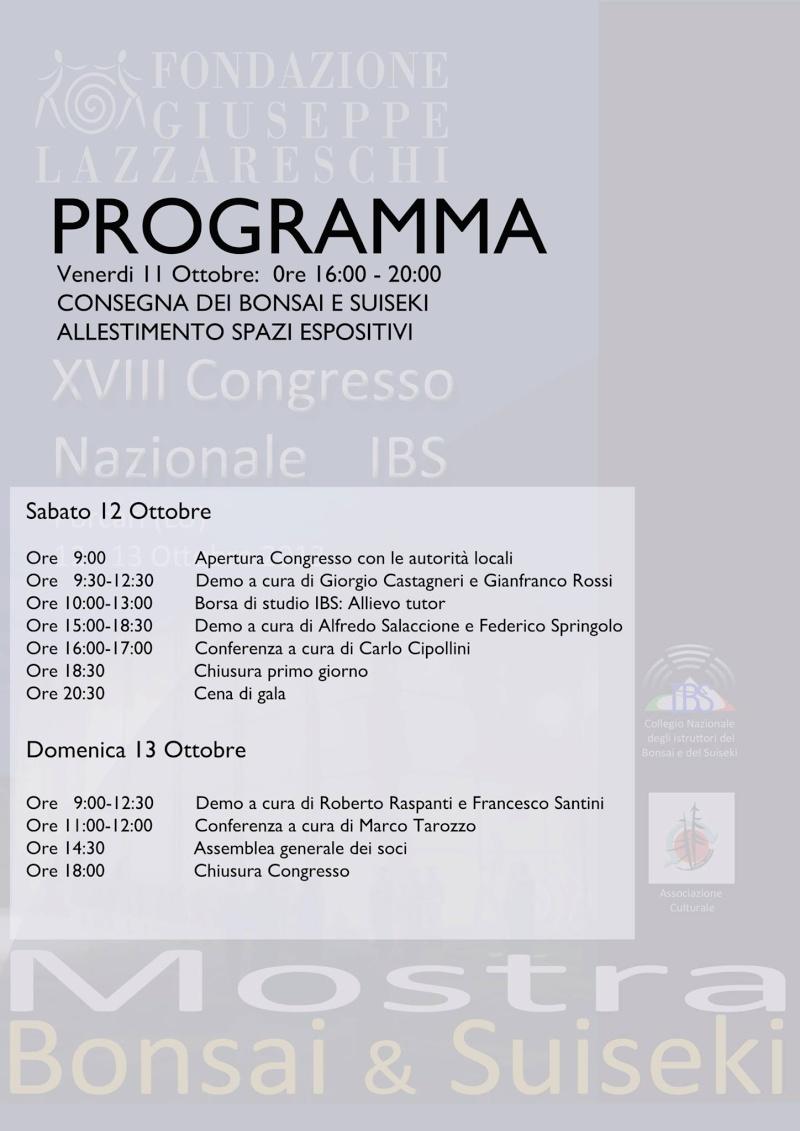 Congresso IBS 2013 12630612