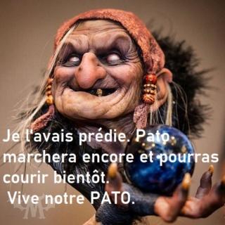 Nouvelles de patogaz - Page 4 05739310