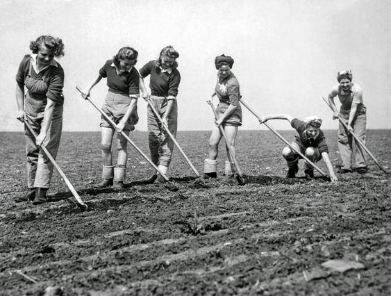 Certaines Photos date de 1939  Les femmes remplace les hommes parti a la guerre  0d620f10