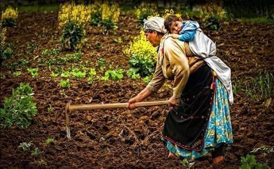 Travail des femmes à la campagne, au moyen-orient et ailleurs 0dfbf010