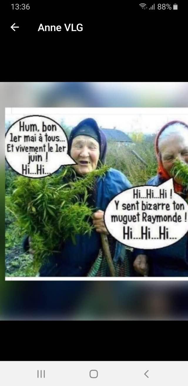 humour en images II - Page 6 18018910