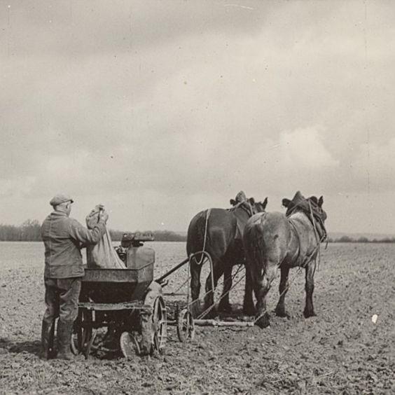La vie d'autrefois dans les fermes - Page 2 29c2e410