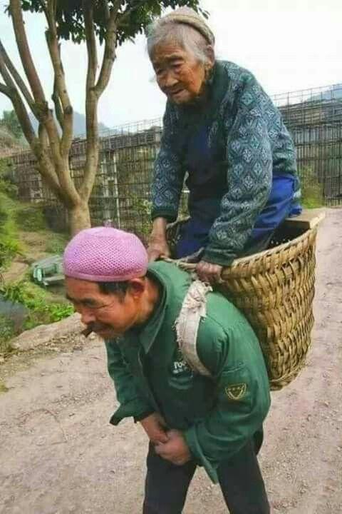 Travail des femmes à la campagne, au moyen-orient et ailleurs 32b04910