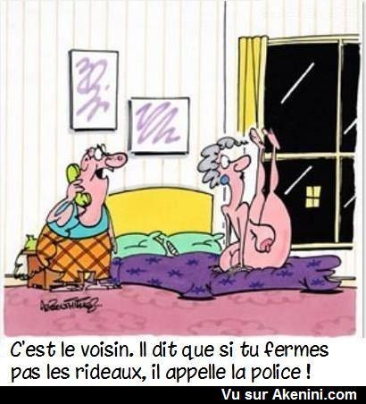 humour en images II - Page 13 376111