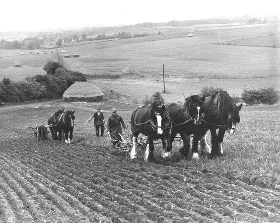 La vie d'autrefois dans les fermes - Page 2 4048b411