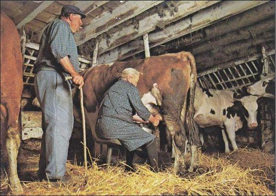 La vie d'autrefois dans les fermes 49de9c10