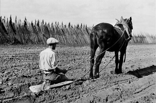 La vie d'autrefois dans les fermes 49e5f110