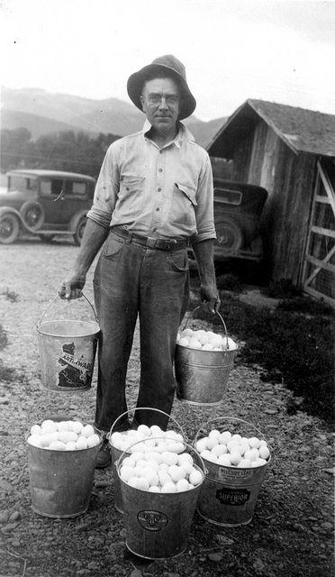La vie d'autrefois dans les fermes - Page 2 4b529410