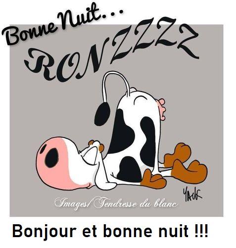 Bonne nuit les petits !! - Page 13 4f346c13