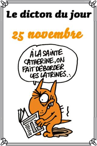 aujourd'hui , c' est la saint .................. - Page 11 4f87f210