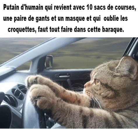 humour en images II - Page 11 507f8510