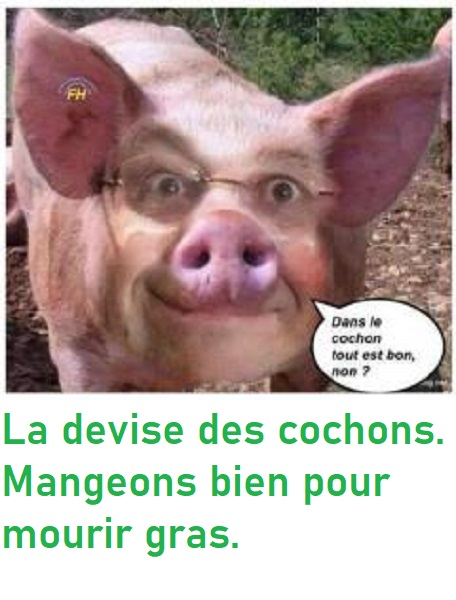 humour en images II - Page 7 57aec210
