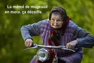 humour en images II - Page 19 9aa83210